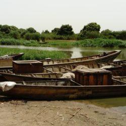 Emmanuel Chauvin : Régionalisations des (in)sécurités en Afrique centrale (autour de la Centrafrique et du lac Tchad)