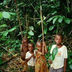 Nobutaka KAMEI : Une ethnographie des enfants baka : de petits chasseurs cueilleurs dans la forêt camerounaise